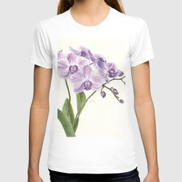 Purple phalaenopsis artwork T-shirt
