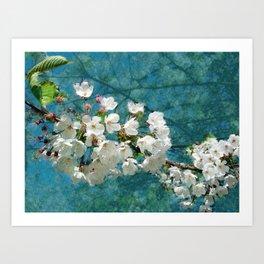 Blossom Textured Art Print