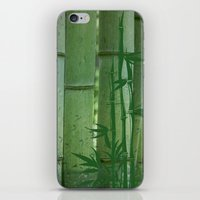 bamboo iPhone & iPod Skins featuring Bamboo by Anne Seltmann