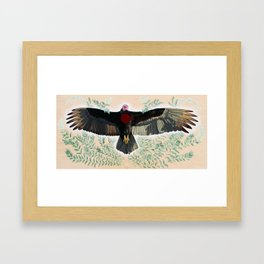 Turkey Vulture is Honoured Framed Art Print