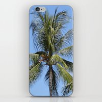 indonesia iPhone & iPod Skins featuring Palm (Bali, Indonesia) by Christian Haberäcker - acryl abstract