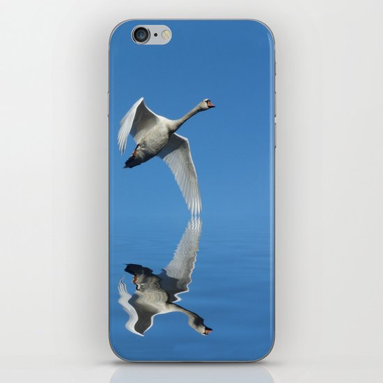Reflections of a Swan iPhone & iPod Skin