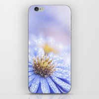 biology iPhone & iPod Skins featuring Blue Aster in LOVE  by UtArt