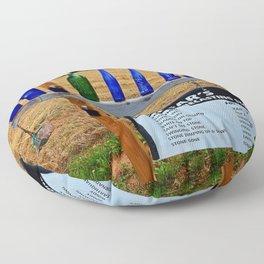 Gar's Weather Forecasting Stone Floor Pillow