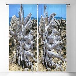 Bermuda  Driftwood Blackout Curtain
