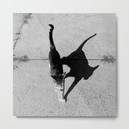 the shadow and her kitty Metal Print
