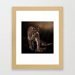 Into The Light - Lynx Art Framed Art Print