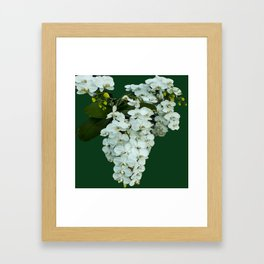 Orchids on the Green Framed Art Print