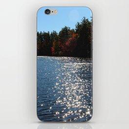 Autumn Sunshine iPhone Skin