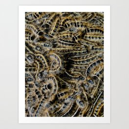Tree Killing Caterpillars Art Print
