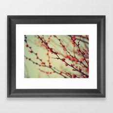 When spring was autumn... Framed Art Print