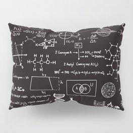 Science Madness Pillow Sham