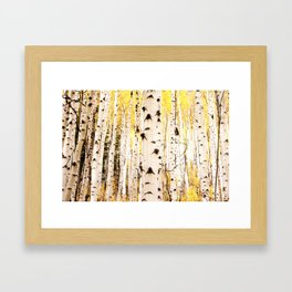 The Trees in Color Framed Art Print