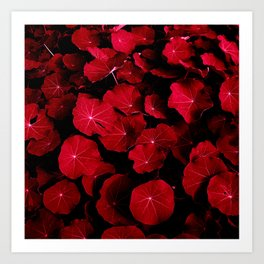 red leafs VII Art Print