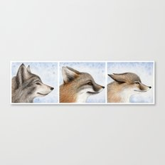 Vanishing Canadian Canids Canvas Print