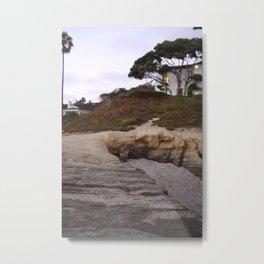 Backyard California Metal Print