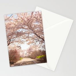 Philadelphia Cherry Blossoms Stationery Cards