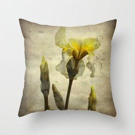 A Yellow Iris Throw Pillow