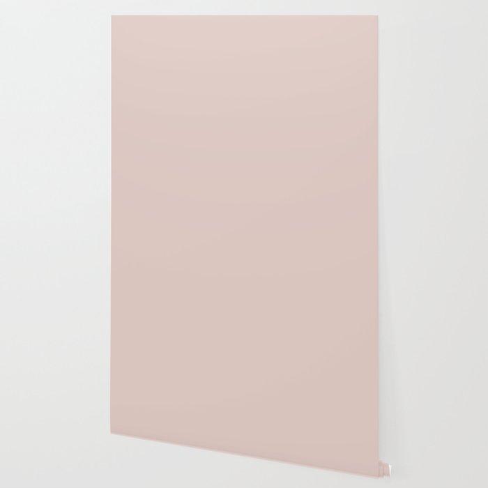 Peach Blush Wallpaper