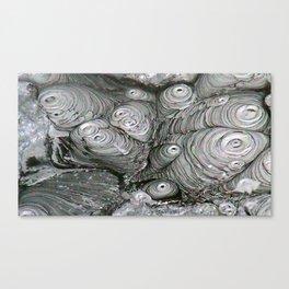 Abstract Thermal Mud Canvas Print
