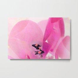 Blossom IV Metal Print