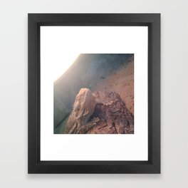 Spikey Framed Art Print