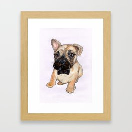 Frenchie With Bowtie Framed Art Print