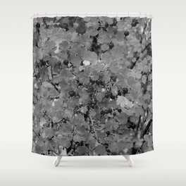 Berries in Black and White Shower Curtain