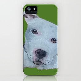Pit Bull Terrier Puppy Portrait on Green iPhone Case