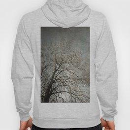 The Tree Hoody