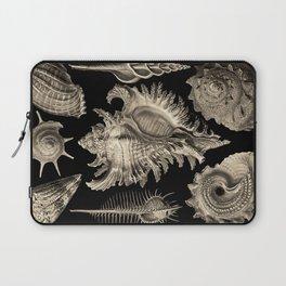 Ernst Haeckel Prosobranchia Sea Shells Laptop Sleeve