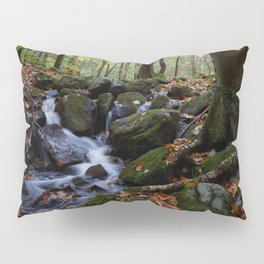 Autumn Forest Stream IV Pillow Sham