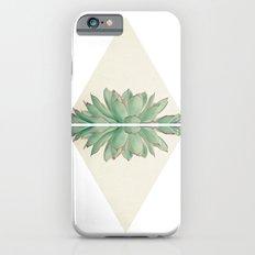 Echeveria II Slim Case iPhone 6s