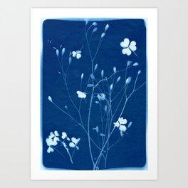indigo 2 Art Print