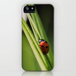 Ladybug on a Leaf iPhone Case