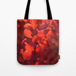 Vermilion Tote Bag