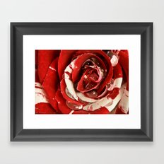 Raspberry Ripple Framed Art Print