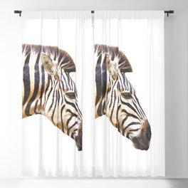 Zebra portrait Blackout Curtain
