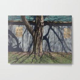 trunk shadow Metal Print
