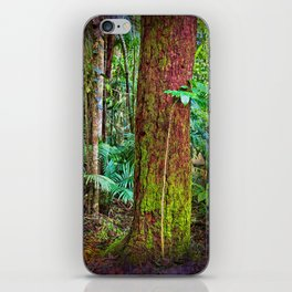 New and old rainforest growth iPhone Skin