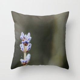 Lavendel Throw Pillow
