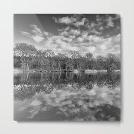 Late Winter Reflections Metal Print