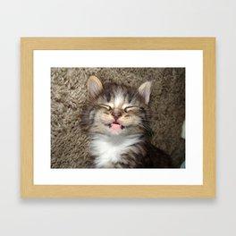 Kitten Smile Framed Art Print