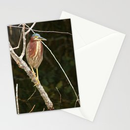 Just Sit Here And Wait Stationery Cards
