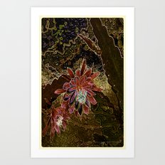 Night Cactus Bronze Art Print