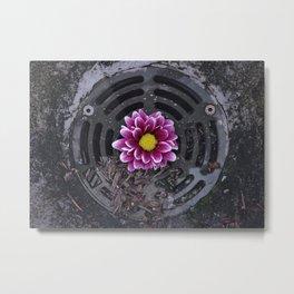 Down The Drain // 3 Metal Print