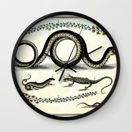 Antique lizard and snake vintage nature book plate drawing victorian art nouveau steampunk oddities Wall Clock