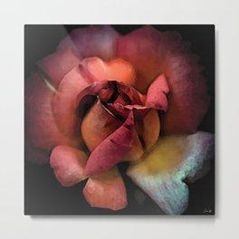 Rose éclose couette colors urban fashion culture Jacob's 1968 Paris Agency Metal Print