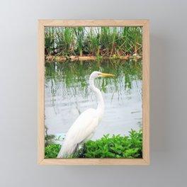 The Great White Egret:) (pointillism) | Large White Bird | Nature Photography Framed Mini Art Print