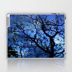 Landscape of My Dreams Laptop & iPad Skin